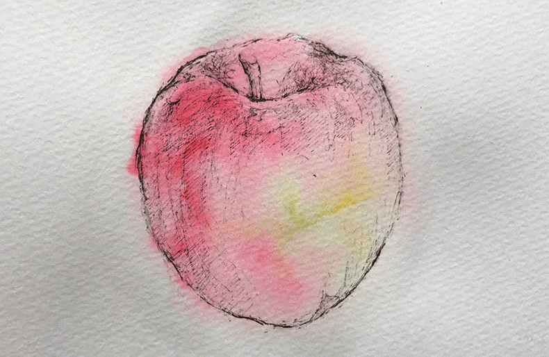 apple_drowing_01