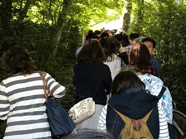 suzumushi_02